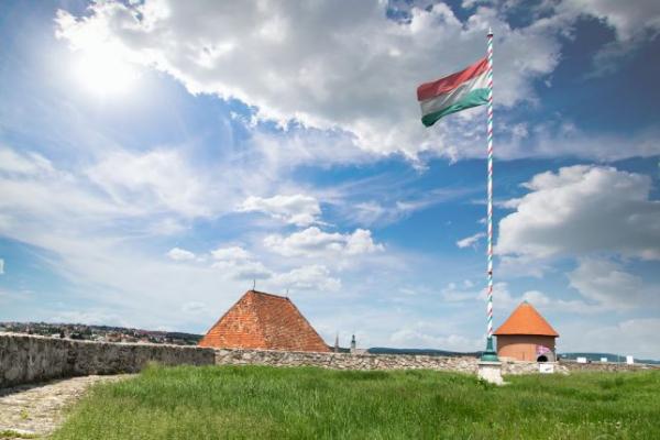 Magyar Kultúra Napja - Önkormányzati kitüntetéseket kaptak munkatársaink